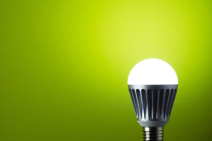 Led-Bulb-on-green1